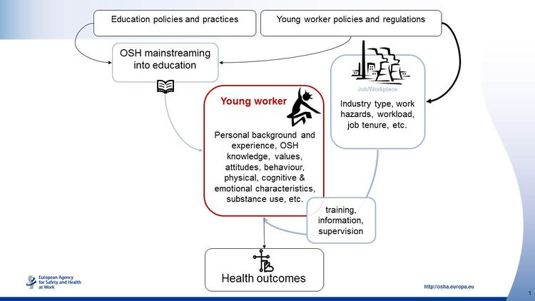 Young worker slide.jpg